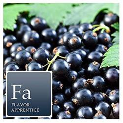 The Perfumers Apprentice - Blackcurrant (TPA)