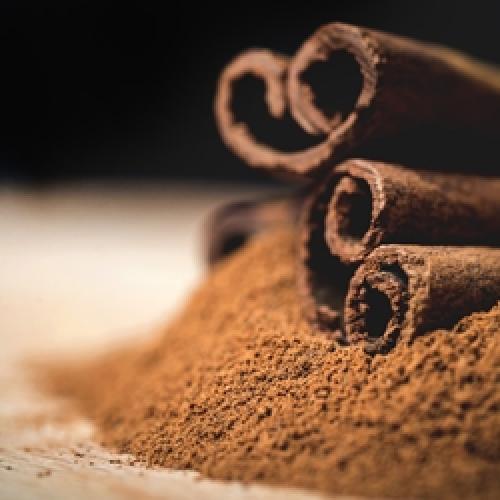 The Perfumers Apprentice - Cinnamon Red Hot (TPA)