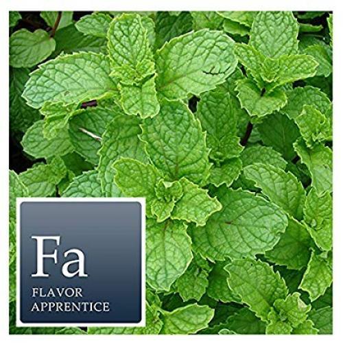 The Perfumers Apprentice - Spearmint (TPA)